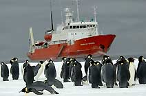 экспедиционное судно ледового класса Spirit   of   Enderby